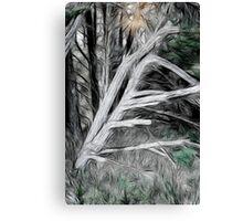 Phantom Pine Canvas Print