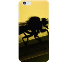 Female Robber Fly (Promachus rufipes) iPhone Case/Skin