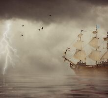 The calm before the storm by Louise Docker