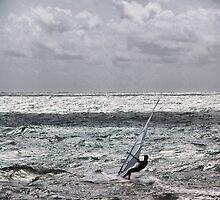 lone windsurfer by Janis Read-Walters