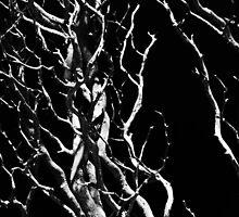 Twisted as DNA by Arek Rainczuk