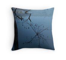 Dusk at Beaver Pond, Jug Bay MD Throw Pillow