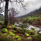 Zezere River Valley by ccaetano