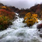 Rapid Water of River Zezere by ccaetano