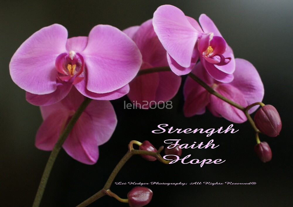 Strength, Hope, Survive; Begin each day with faith.  Lei Hedger Photography All Rights Reserved by leih2008