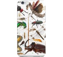 Insects of Gorongosa National Park, Mozambique iPhone Case/Skin