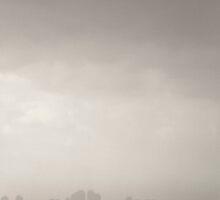 Misty Dawn by Leandro Leme