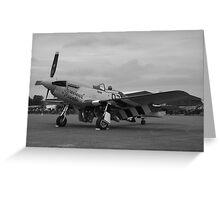 P-51 Mustang 'Ferocious Frankie' @ IWM Duxford Greeting Card
