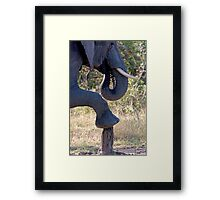 How Long Is The Wait For A Pedicure? Framed Print