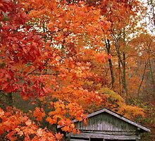 Old Paint Creek School in Autumn by Kent Nickell