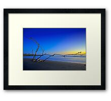 Not far from the Tree Framed Print