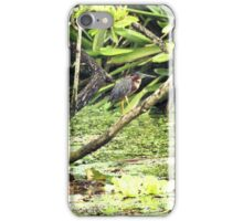 Pond - ering iPhone Case/Skin