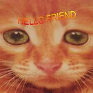 HELLO  FRIEND by trisha22