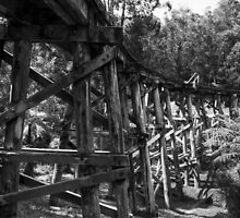 Trestle Bridge by Lois Romer