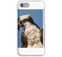 Irritated Osprey iPhone Case/Skin