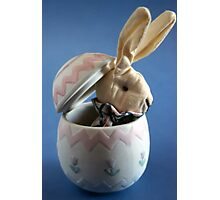 Bunny in Egg Photographic Print