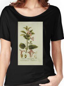 Plantarum Indigenarum et Exoticarum - Lukas Hochenleitter und Kompagnie 1788 - 043 Women's Relaxed Fit T-Shirt