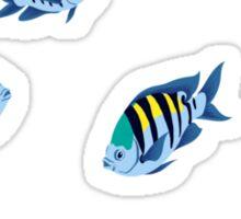 Fish: Sergeant Majors Sticker