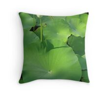 Dew on a Lotus Pad - Norfolk Botanical Gardens Throw Pillow