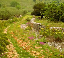 Greek Path by Tom Nelson