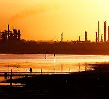 Industrial Gold by Rhonda F.  Taylor