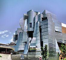 Weisman Art Museum, Minneapolis by shutterbug2010