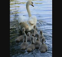 Mother Swan And Cygnets Unisex T-Shirt