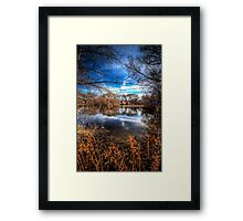 Through the Foilage 2 Framed Print