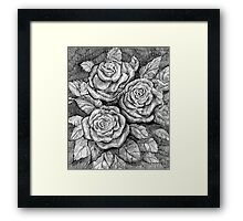 Romantic roses Framed Print