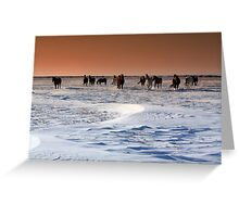 Let's not get trampled... Greeting Card