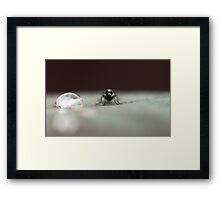 Alien World Framed Print
