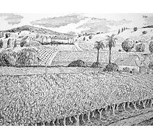 landscape #3 Photographic Print