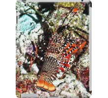 Caribbean Spotted Spiny Lobster at Night iPad Case/Skin