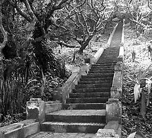 Stairs to Phu Si mountain by RobAllsop