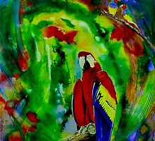 Macaw's World by Ciska