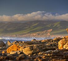 Golden Jalama by Cathy L. Gregg