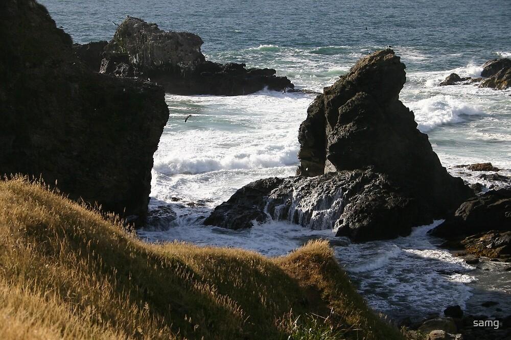 Ruggered Paradise Valdivia Chile by samg