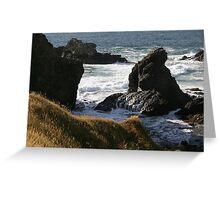 Ruggered Paradise Valdivia Chile Greeting Card