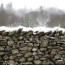 Dry Stone by maxwell78