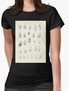 Manual of the New Zealand Mollusca by Henry Sutter 1915 0057 Riama Rissoa Womens Fitted T-Shirt