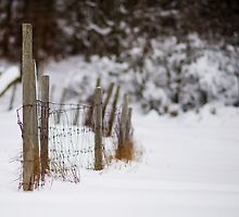 Winter Fence by Johan Hagelin