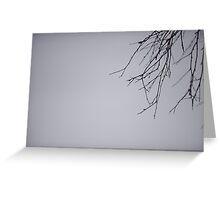 Birch Branch Greeting Card