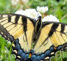 Eastern Tiger Swallowtail Sticker