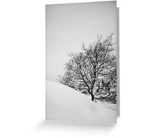 Tree in slope Greeting Card