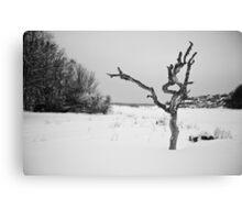 The Snowy Dead Tree Canvas Print