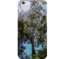 Eucalypts and sun playing iPhone Case/Skin