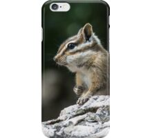 Living a good life under the bird feeders iPhone Case/Skin