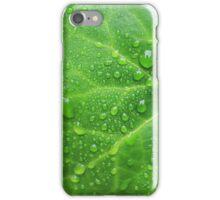 Leafy Rain Drops iPhone Case/Skin