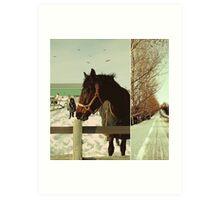 Winter Horses II Art Print