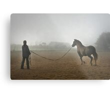 Whatever the weather ... Metal Print